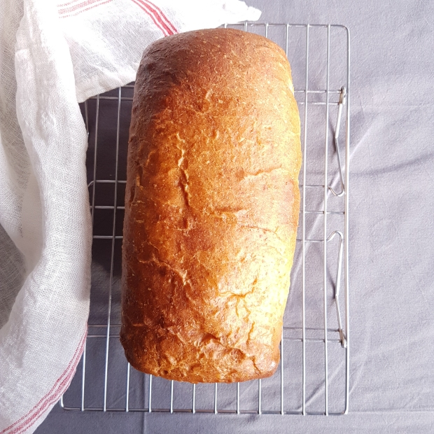 everyday spelt bread